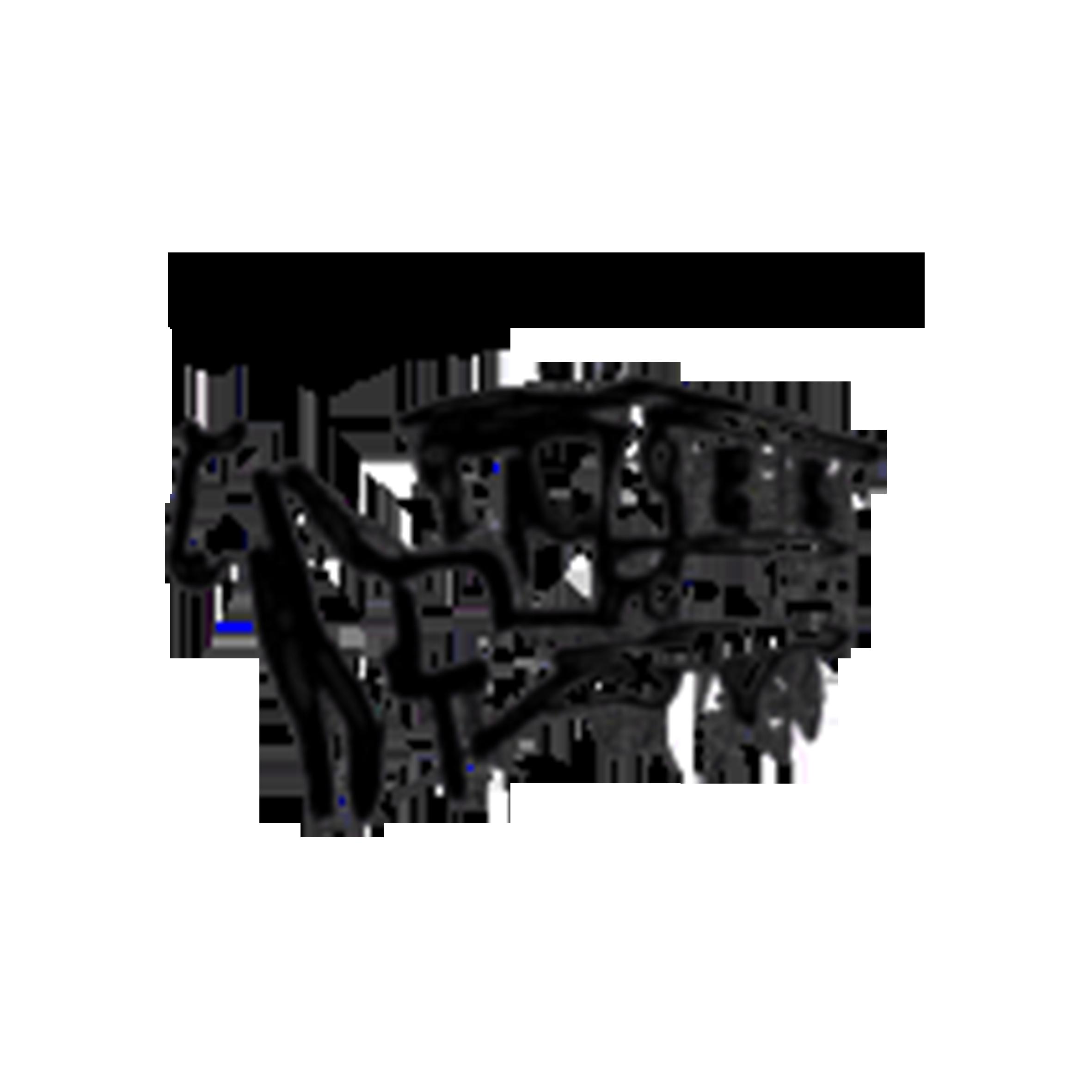 logo_romroulotte
